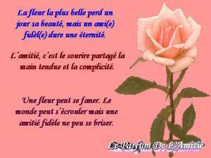 Poeme D Amitie Poeme D Amitie Tres Touchant